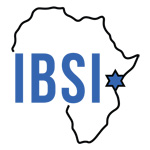 Institute for Black Solidarity with Israel (IBSI)